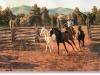cox-jinglin-horses-19f
